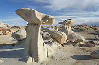 Sandstone hoodoos, Bisti Badlands, Bisti/De-Na-Zin Wilderness, New Mexico
