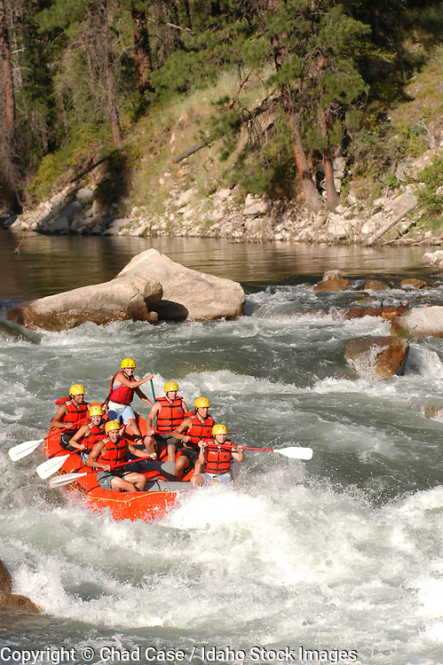 A crew of rafters paddle down the Slalom rapid on the South Fork of the Payette river.