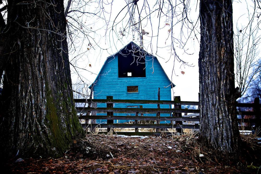 Blue barn between two trees in Providence, Utah Dec. 6, 2010.