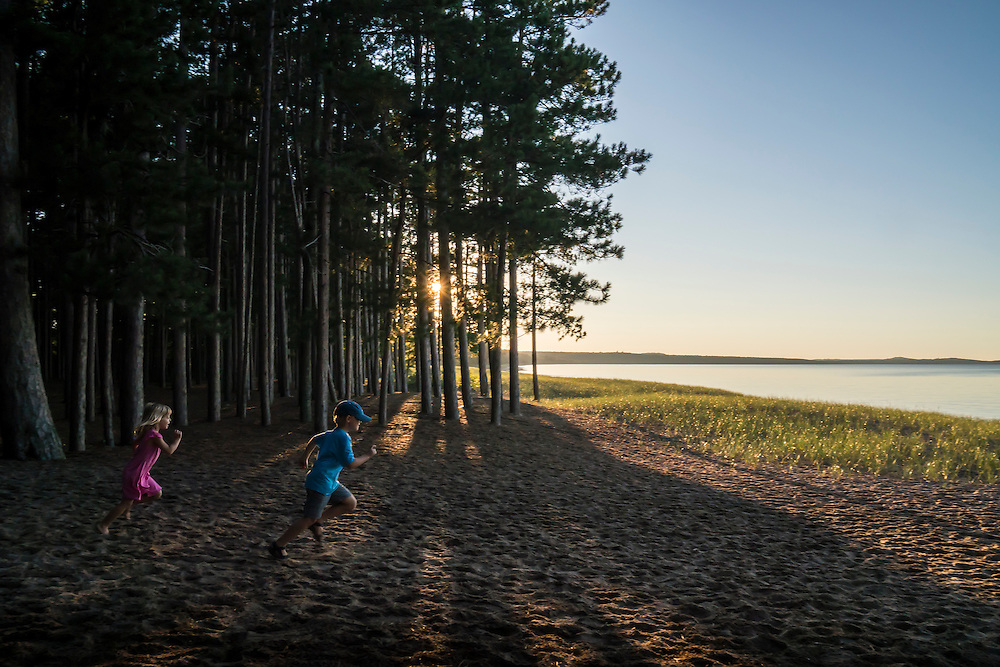 The pine forest along the Lake Superior beach at Little Presque Isle natural area near Marquette, Michigan.
