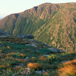 Late summer colors above treeline on Lion Head.  Boott Spur is in the distance across Tuckerman Ravine.  White Mountains National Forest. Mt. Washington, NH