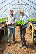 Brian Shipman and Mary Colombo of Wild Roots Farm take care of starts in their seed house in Corbett, Oregon.