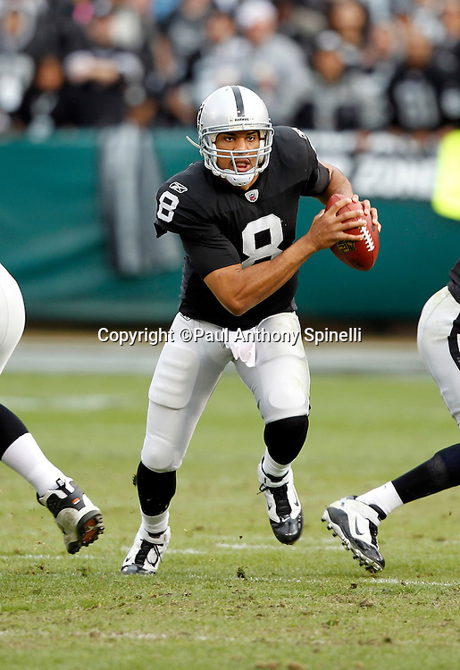 Oakland Raiders quarterback Jason Campbell (8) runs away from pressure during the NFL week 16 football game against the Indianapolis Colts on Sunday, December 26, 2010 in Oakland, California. The Colts won the game 31-26. (©Paul Anthony Spinelli)