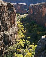 Havasu Falls and Havasu Canyon