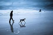 Man walking on beach with dog
