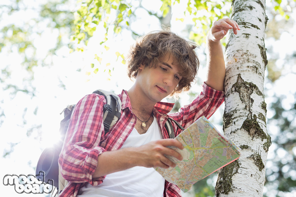 Male backpacker reading map while leaning on tree trunk in forest