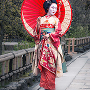 These beautiful hostesses can occasionally be seen sashaying through the streets of Kyoto and are immediately identifiable by their white make-up, elaborate kimono and perfect hair. For me they are part of the Japanese culture which really sets it apart from what we are accustomed to in the West. To be allowed to photograph a geisha was a real privilege for me.<br />