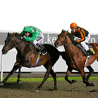 Winning Spark and Tom Queally winning the 8.20 race