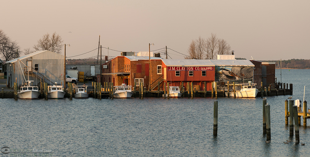 Fishing boats used for crabbing and oystering on the Chesapeake bay dock for the night in Cambridge, Maryland.