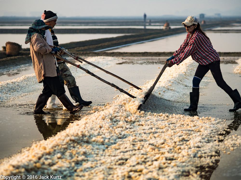 10 FEBRUARY 2016 - BAN LAEM, PHETCHABURI, THAILAND: A team of workers pile salt in a salt field at the beginning of the harvest in Phetchaburi province, Thailand. The salt harvest in Thailand usually starts in February and continues through May. Salt is harvested in many of the provinces along the coast, but the salt fields in Phetchaburi province are considered the most productive. The salt fields are flooded with sea water, which evaporates off leaving salt behind. Salt production relies on dry weather and producers are hoping the current drought will mean a longer harvest season for them.      PHOTO BY JACK KURTZ