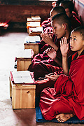 Monks studying at Eutok Samdrup Choeling Monastery
