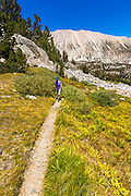 Hiker in Sam Mack Meadow under the Palisades, John Muir Wilderness, California USA
