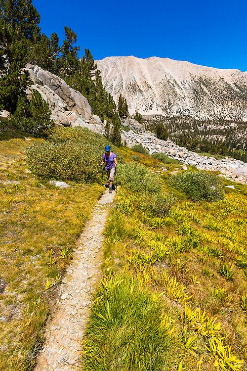 Hiker in Sam Mack Meadow under the Palisades, John Muir Wilderness, California USA
