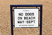 No Dogs on Beach seaside sign Felixstowe, Suffolk, England, UK
