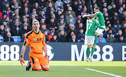 Brighton & Hove Albion's Glenn Murray (centre) celebrates scoring his side's first goal of the game as Crystal Palace goalkeeper Vicente Guaita (left) looks on dejected