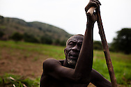 "A family plants corn on their land in the Nuba mountains after returning from living in caves in the hillsides . Civilian bombing campaigns have interupted the planting season as many people flee to the hills to hide in the caves. ""We are afraid of the bombs, but if we don't plan we will die anyway,"" says the father."