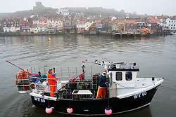 © Licensed to London News Pictures. 03/04/2014<br /> <br /> Whitby, North Yorkshire, United Kingdom<br /> <br /> Crab fisherman head back out to sea after weighing in their first catch of lobster and crab of the day as fog shrouds the North Yorkshire seaside town of Whitby. <br /> <br /> Photo credit : Ian Forsyth/LNP