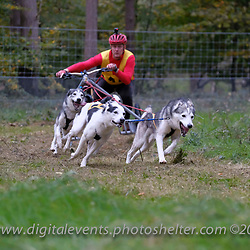 Cs 3-4 Huskies