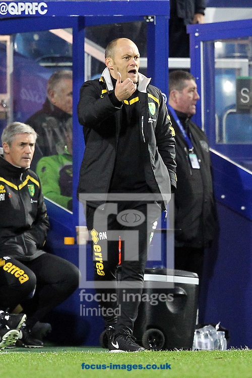 Norwich Manager Alex Neil during the Sky Bet Championship match at the Loftus Road Stadium, London<br /> Picture by Paul Chesterton/Focus Images Ltd +44 7904 640267<br /> 19/11/2016