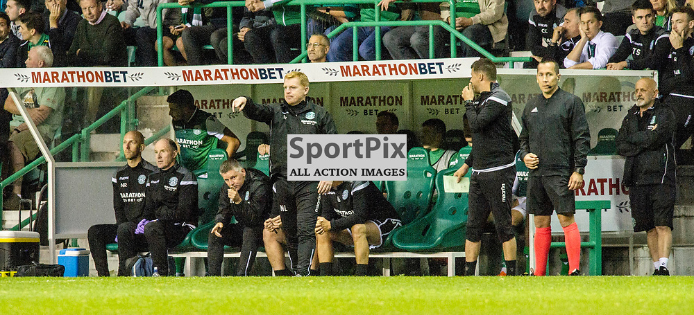 Pictured: Neil Lennon back in the dugout for the game<br /> <br /> Hibs welcomed Molde to Easter Road for their second home game of the Europa League campaign