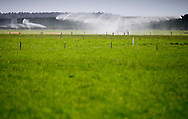 Rakaia Inc, near Rakaia - Ahuwhenua Trophy BNZ Maori Excellence in Farming Award, 11 February 2016. Photo by John Cowpland / alphapix<br /> <br /> CONDITIONS of USE:<br /> <br /> FREE for editorial use in direct relation the Ahuwhenua Trophy competition. ie. not to be used for general stories about the finalist or farming.<br /> <br /> NO archiving of images. NO commercial use. <br /> Please contact John@alphapix.co.nz if you have any questions