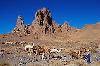 April 2001, Ahaggar, Algeria --- Camel Caravan in the Sahara Desert --- Image by © Owen Franken/CORBIS