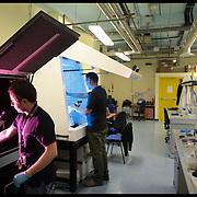 Istituto Italiano di Tecnologia di Genova,.. nella foto:  Nanophysics - Scanning Prote Lab..E' il laboratorio di microscopia a forza atomica dove vengono caratterizzate le superfici dei materiali sintetizzati nei laboratori..di nanachemistry..