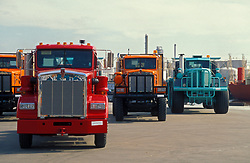 Colorful large transport trucks lined up and ready to go