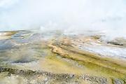 Porcalain Basin in the Norris Geyser Basin of Yellowstone Porcelain Basin in the Norris Geyser Basin on Yellowstone National Park