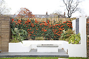 The back garden at 31 Groombridge Road, Hackney, London CREDIT: Vanessa Berberian for The Wall Street Journal<br /> HACKNEY-Lana Wrightman