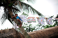 A boy hangs Congress party campaign posters near a polling station during the second phase of voting in parliamentary elections April 23, 2009 in the town of Mukalmua in the state of Assam, India.  Congress party leaders Rahul Gandhi and Kamal Nath, the commerce minister, and key government allies face Indian voters today in the second round of polling in a five-stage general election.