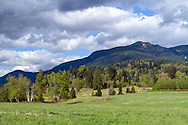Farmland and McNab Peak in Durieu on Hatzic Prairie, British Columbia, Canada