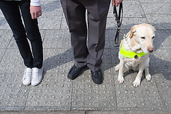 Vision impaired man; guide dog and young sighted guide prepare to cross a road; the raised bobbles on the pavement help to define the edge of the road,
