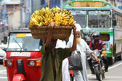 May 1, 2019 - Colombo, Sri Lanka - A Sri Lankan street vendor sells Bananas in Colombo on 01 May, 2019. . Due to the Easter bomb blast on 21st April 2019, Sri Lankan major political parties announced to cancel May Day rallies. (Credit Image: © Pradeep Dambarage/ZUMA Wire)