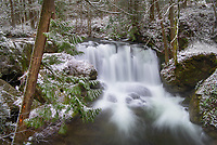 Whatcom Falls asfter fresh dusting of winter snow. Whatcom Falls City Park, Bellingham Washington