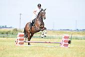 Class 07 - Novice Horse & Pony