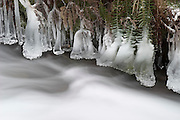 Frozen Wahkeena Creek with ice encrusted ferns in the Columbia River Gorge National Scenic Area, Oregon.