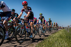 Peloton with VALVERDE Alejandro from Spain of Movistar Team (ESP) on the Waaldijk at Gendt with 180 km to go, stage 3 from Nijmegen to Arnhem running 190 km of the 99th Giro d'Italia (UCI WorldTour), The Netherlands, 8 May 2016. Photo by Pim Nijland / PelotonPhotos.com | All photos usage must carry mandatory copyright credit (Peloton Photos | Pim Nijland)