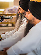 "08 FEBRUARY 2015  BANGKOK, THAILAND:  Musicians perform Sikh hymns in the Darbar Sahib (prayer hall) at Gurdwara Siri Guru Singh Sabha, the Sikh temple in Bangkok. Thailand has a small but influential Sikh community. Sikhs started coming to Thailand, then Siam, in the 1890s. There are now several thousand Thai-Indian Sikh families. Gurdwara Siri Guru Singh Sabha was established in 1913. Construction of the current building, adjacent to the original Gurdwara (""Gateway to the Guru""), started in 1979 and was finished in 1981. The Sikh community serves a daily free vegetarian meal at the Gurdwara that is available to people of any faith and background.   PHOTO BY JACK KURTZ"