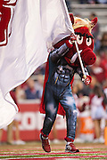 FAYETTEVILLE, AR - OCTOBER 31:  Mascot of the Arkansas Razorbacks runs with the flag in his Halloween costume after a touchdown during a game against the UT Martin Skyhawks at Razorback Stadium on October 31, 2015 in Fayetteville, Arkansas.  The Razorbacks defeated the Skyhawks 63-28.  (Photo by Wesley Hitt/Getty Images) *** Local Caption ***