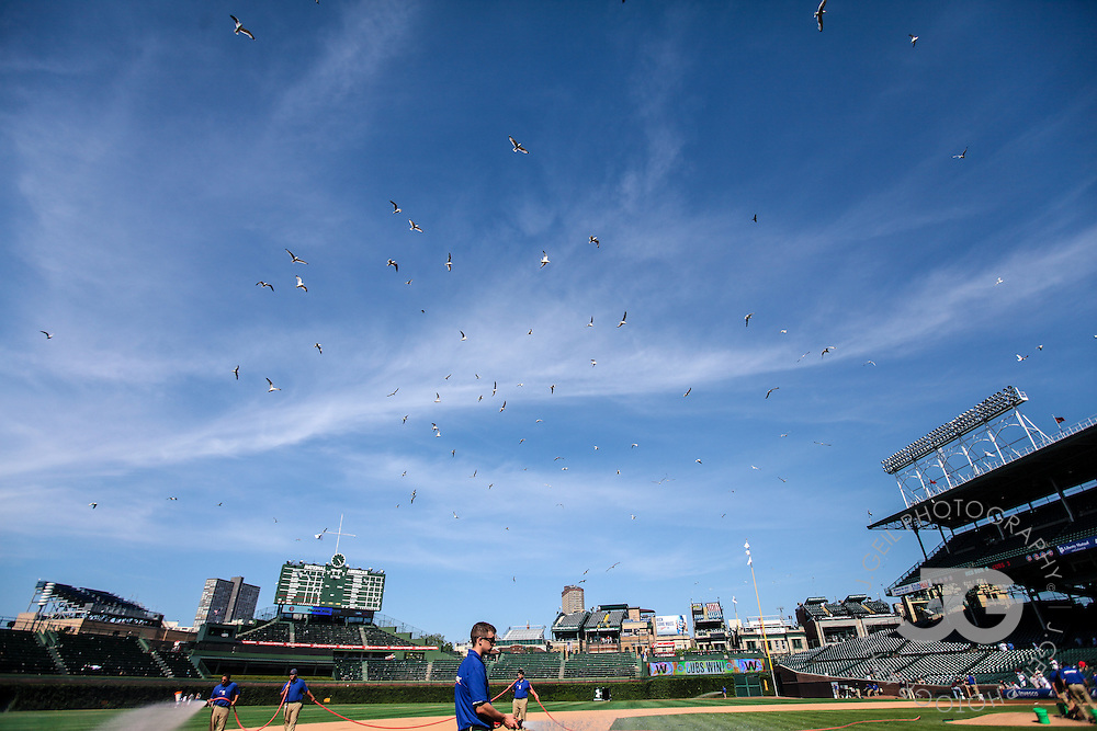 Chicago Cubs vs. Boston Red Sox at Wrigley Field in Chicago, Ill., Friday, June 15, 2012. Photo by J.Geil Photography.