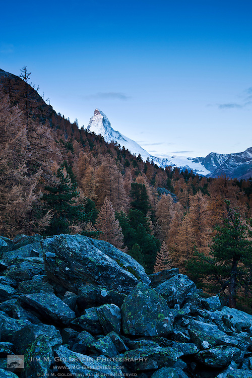 First light on the Matterhorn as it rises above a surrounding Larch forest - Zermatt, Switzerland