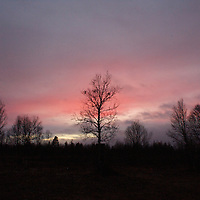 Hirvas Salmi, FINLAND. October 18, 2007- A pink dusk sweeps over the arctic landscape.