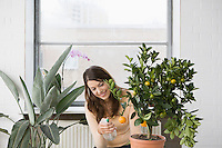 Woman tending potted orange tree at home