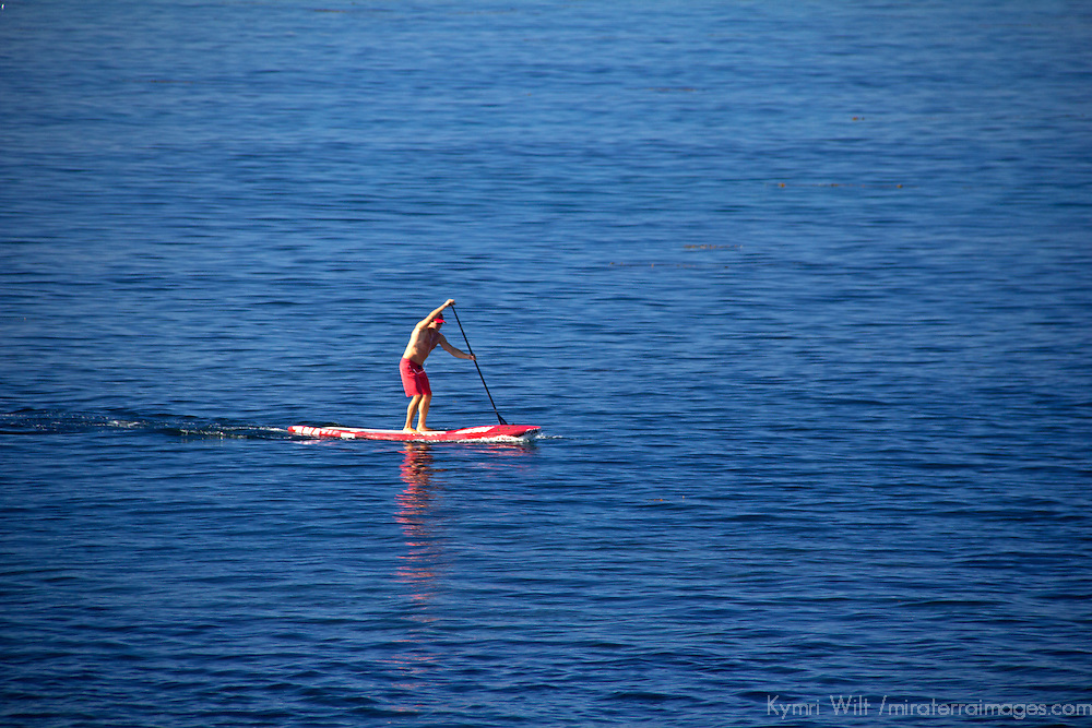USA, California, San Diego. Stand Up Paddle Boarder in waters off La Jolla.