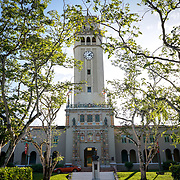 PUERTO RICO -- JANUARY  10, 2018: The University of Puerto Rico's bell tower framed by trees, on January 10 2018 in Rio Piedras, Puerto Rico.  The university's theater was the venue selected for the run of Hamilton but was replaced at the last minute due to security concerns.  <br /> (Angel Valentin / For The Times)