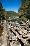 Teakearne Arm, Desolation Sound, British Columbia, Canada