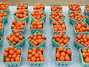 organic tomatoes decorative display at a green market.