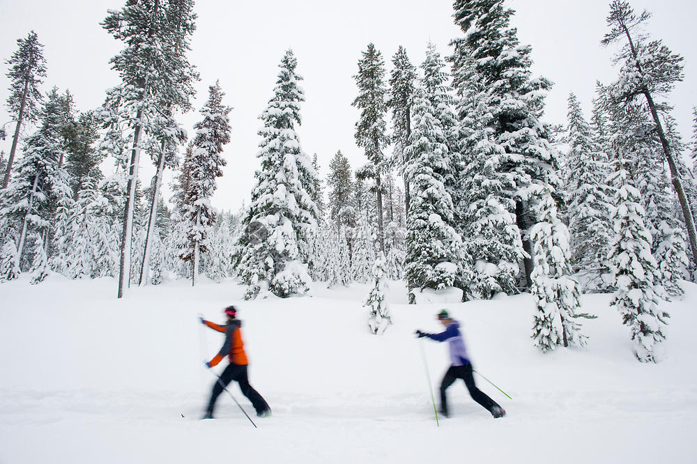 Two young women cross country ski on a trail in the snow in Bend, Oregon. (releasecode: jk_mr1033, jk_mr1032) (Model Released)