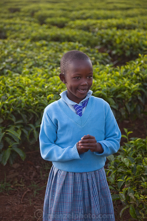 The daughter of Kibet Serem's brother on her way to school with the tea field in the background. (Kibet Serem is featured in the book What I Eat: Around the World in 80 Diets.)  Kibet Serem cares for a small tea plantation that his father planted on their property near Kericho, Kenya when Kibet was a young boy and he is responsible for milking the cows that his family owns. He is 25 years of age. He sells extra milk to a nearby school for a government feeding program and gives some to his mother who makes yogurt and sells it. His staple food is ugali, a maize meal porridge. He milks, feeds, waters and cares for the cows twice a day with the help of the wives of his brothers who also live on the property in their own houses.